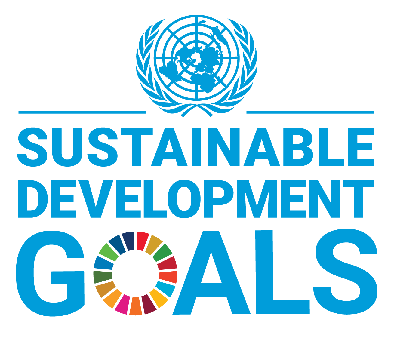 About the SDGs
